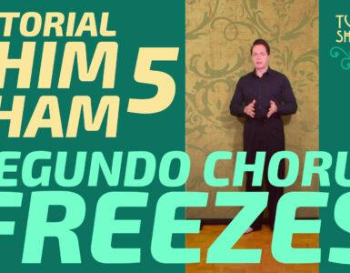 tutorial shim sham 6