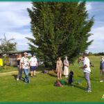 el cotarro swing golf 8